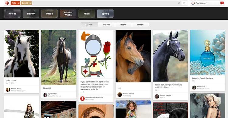 pinterest-fotografie-cavalli