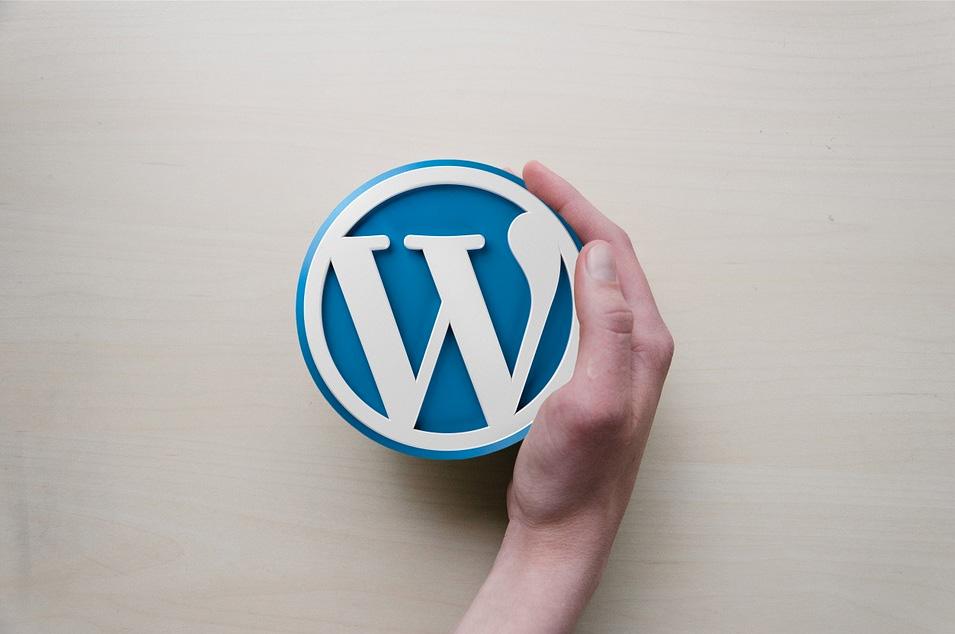 riparazione-template-wordpress-siti-web